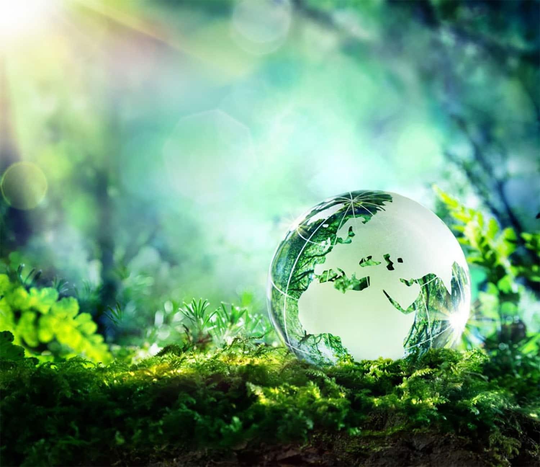 eco-attitude environnement
